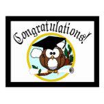 Cute Cartoon Graduation Owl With Cap & Diploma Postcard