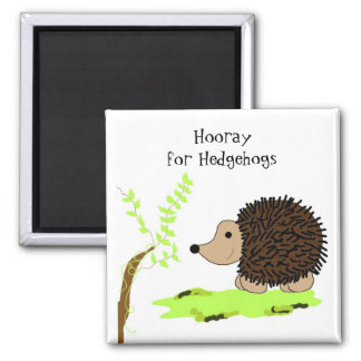 Cute Cartoon Hedgehog Magnets