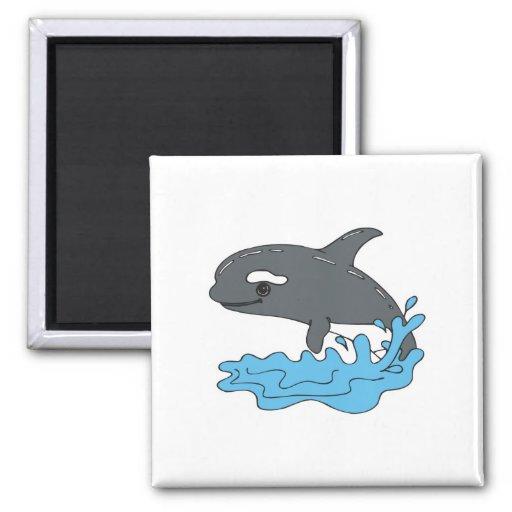 cute cartoon orca killer whale fridge magnet