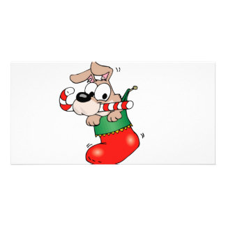 Cute cartoon puppy in Christmas stocking Card