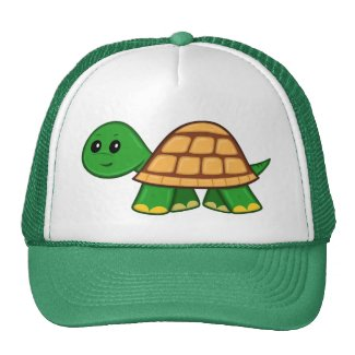 Cute Cartoon Turtle Hat