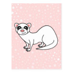 Cute Cartoon White Ferret Pink Star Background Post Cards