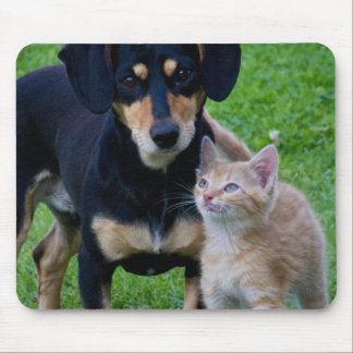 Cute cat and dog friends mouse pad