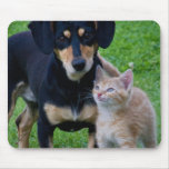 Cute cat and dog friends mousepad