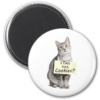 Cute Cat asks I can Has Cookies? Magnet