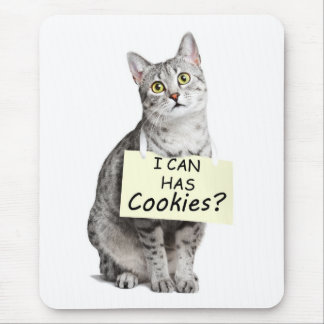Cute Cat asks I can Has Cookies? Mouse Pad
