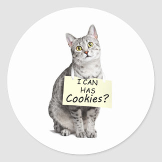 Cute Cat asks I can Has Cookies? Round Sticker
