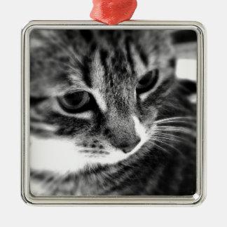 Cute Cat black and white designs Metal Ornament