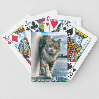 Cute Cat Brings Good Luck Poker Playing Cards