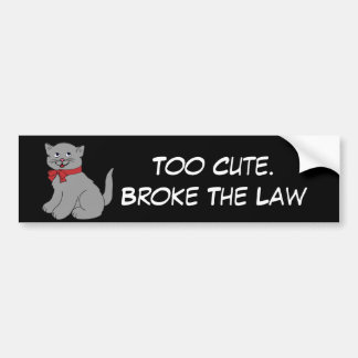 Cute Cat Bumper Sticker
