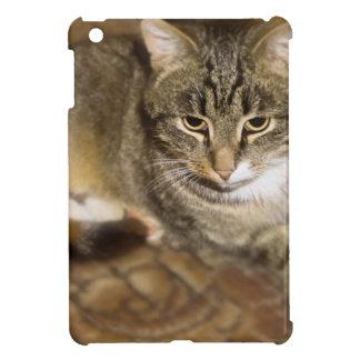 Cute Cat Cover For The iPad Mini