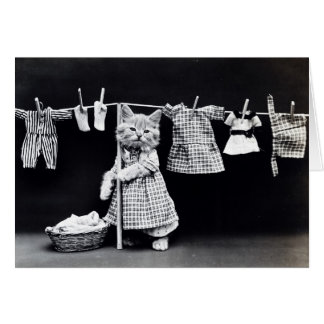 Cute Cat Doing Laundry in Clothes Vintage Print Card