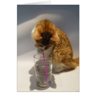 Cute Cat Drinking from Straw Happy Birthday Card
