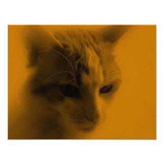 Cute Cat Face Custom Invite