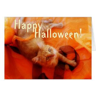 Cute Cat Halloween Card