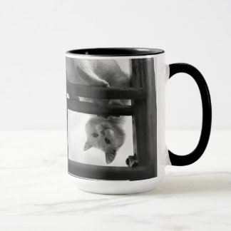 cute cat hanging upside down on ladder mug