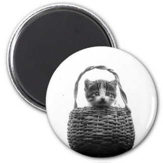 Cute Cat in a Basket Vintage Photo 2 Inch Round Magnet