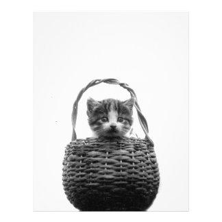 Cute Cat in a Basket Vintage Photo Flyer
