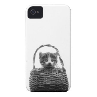 Cute Cat in a Basket Vintage Photo iPhone 4 Case