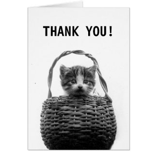 Cute Cat in Basket Vintage Photo | Thank You Card