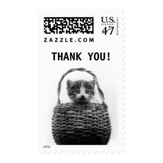 Cute Cat in Basket Vintage Photo | Thank you Postage