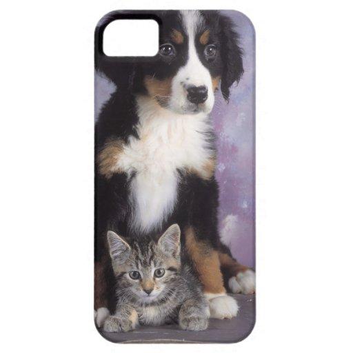 Cute cat in dog in love iPhone 5 cover