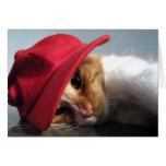 Cute Cat in Red Cap Blank Note Card