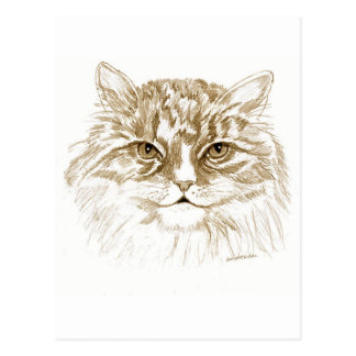 Cute Cat in Sepia Postcard