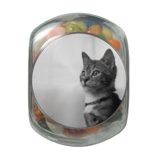 Cute Cat Jelly Belly Candy Jars