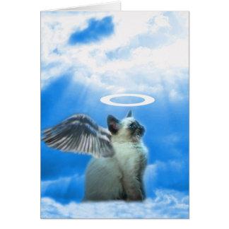 Cute Cat Kitten Christmas Card