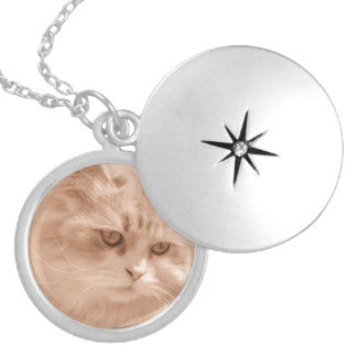 Cute Cat Kitten Face, Silver Plated Round Locket