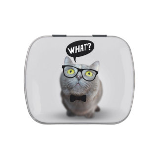 Cute Cat kitten with glasses what quote funny Candy Tin