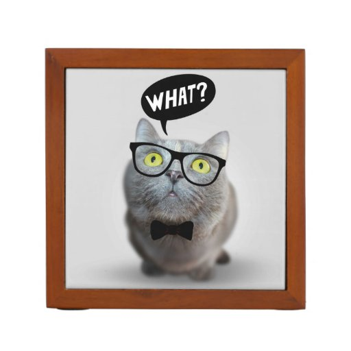 Cute Cat kitten with glasses what quote funny Pencil/Pen Holder