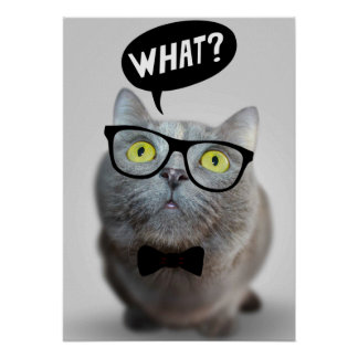 Cute Cat kitten with glasses what quote funny Posters