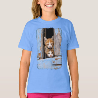 Cute Cat Kittens in a Blue Vintage Window  - girl T-Shirt