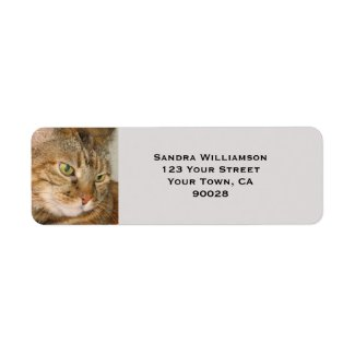 Cute cat return address label