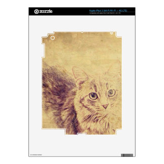 Cute cat lover pencil sketch grey tabby cat decals for iPad 3