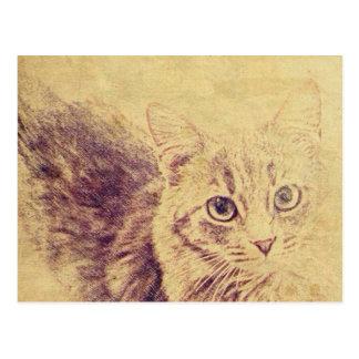 Cute cat lover pencil sketch grey tabby cat postcard
