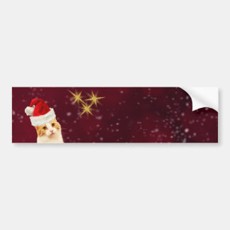 Cute Cat Merry Christmas Greetings Bumper Sticker