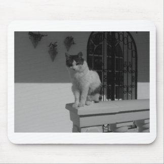Cute cat mouse pad