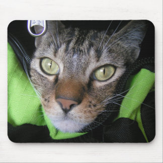 Cute Cat Mouse Pad. Mouse Pad
