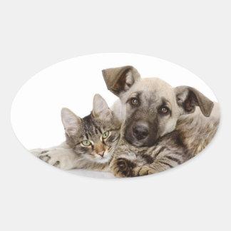 Cute Cat Oval Stickers, Glossy Oval Sticker