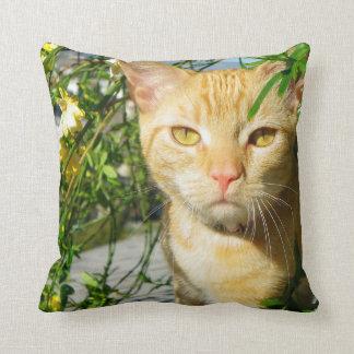Cute Cat Pillow! Throw Pillow