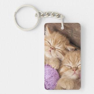 Cute Cat Rectangle (single-sided) Keychain