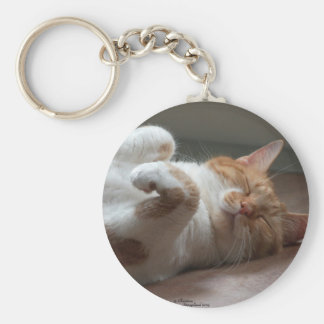 Cute Cat sleeping Keychain