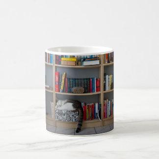 Cute cat sleeping on bookshelf library books coffee mug