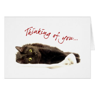Cute Cat Thinking Of You card