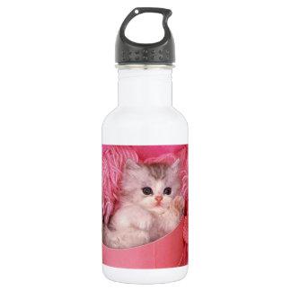 cute cat water bottle