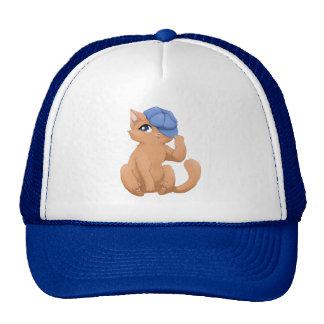 Cute cat wearing a hat
