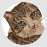 Cute Cat with Green Eyes and Tilted Head Classic Round Sticker